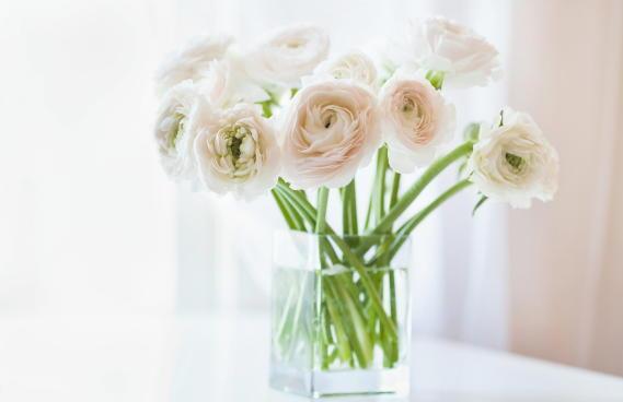 8 rzeczy, o których w kwiaciarni nam nie powiedzą