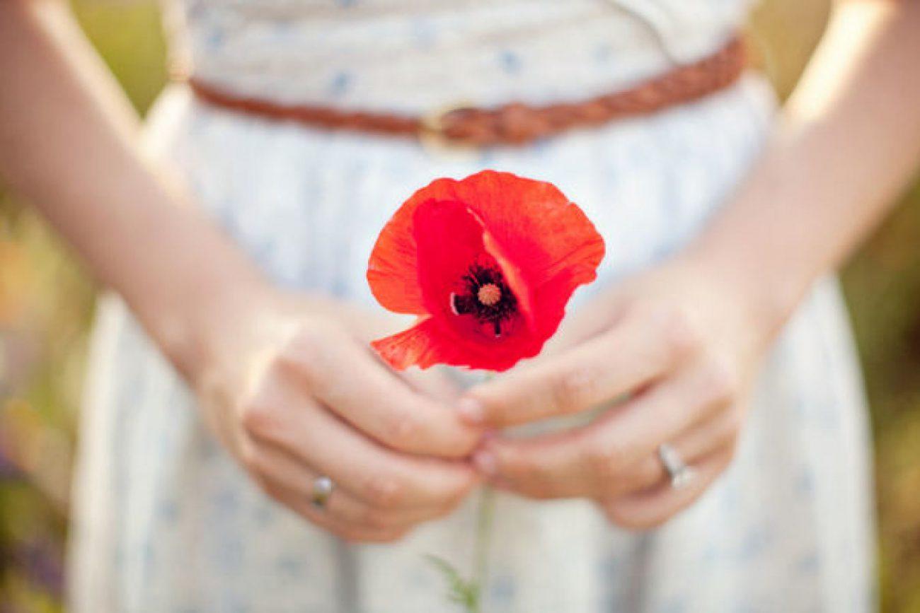 kwiat maku