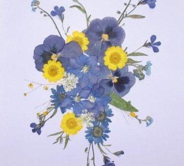 zastosowanie kwiatów prasowanych
