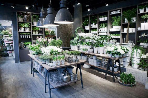Kwiaciarnia która wprowadzi klienta w zachwytKwiaciarnia która wprowadzi klienta w zachwyt