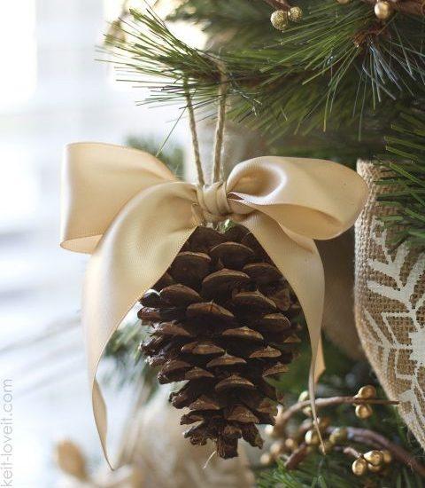 Szyszki w świątecznym wydaniu