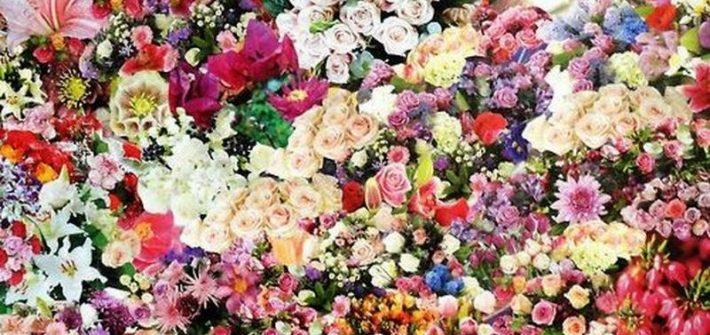 Barwy we florystyce