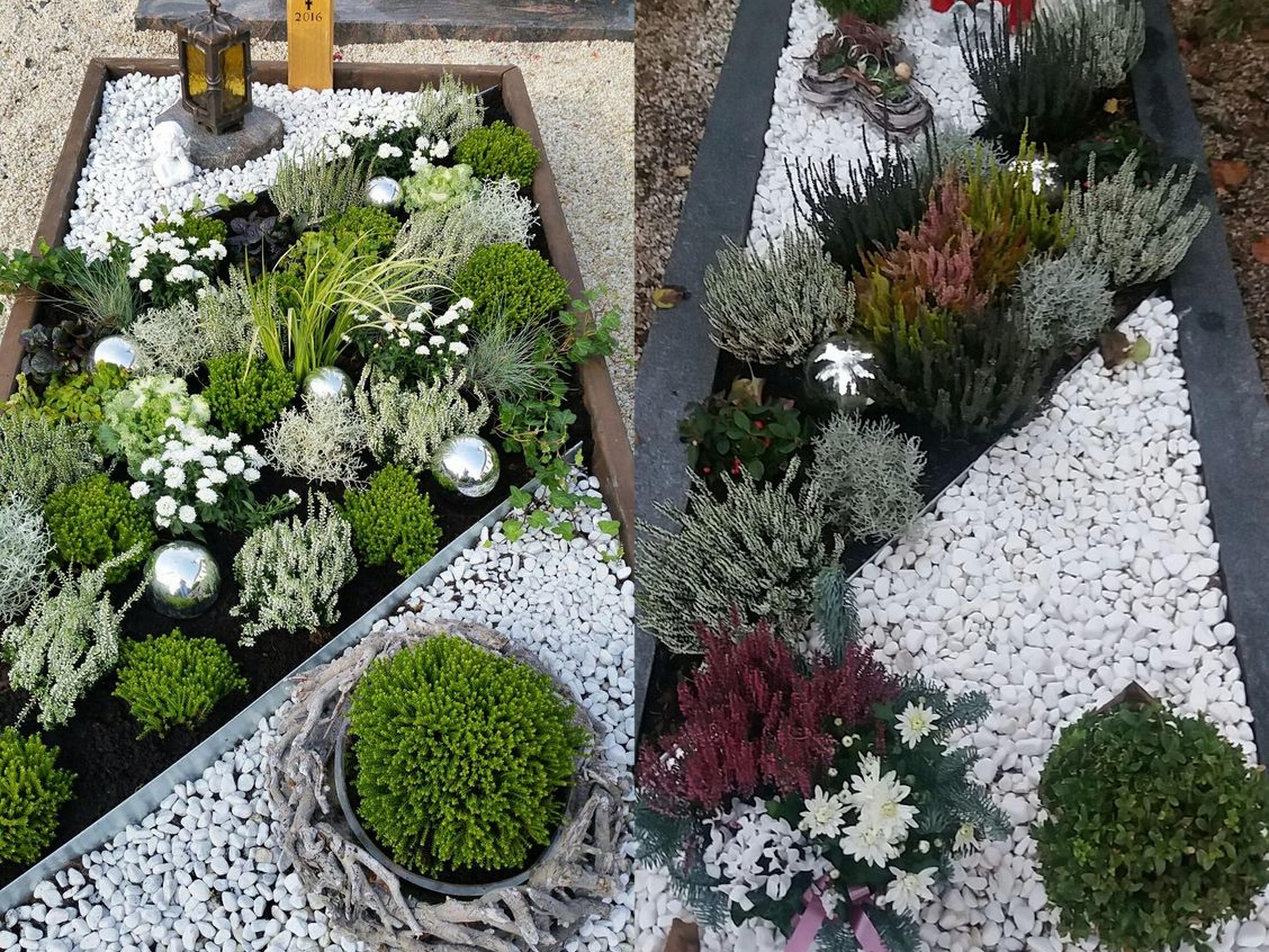 Jakie Kwiaty Wybrać Na Grób Blog Florystyczny