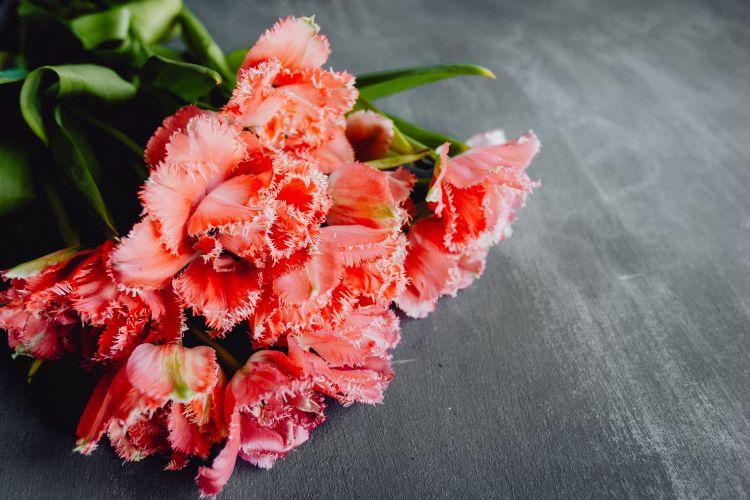 Pojęcia florystyczne