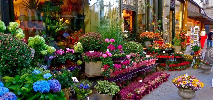 Jak dobrze wybrać lokal dla swojej kwiaciarni?