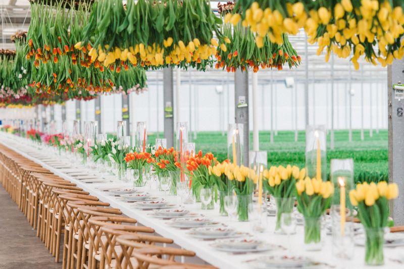 wiszace kwiaty nad stolem