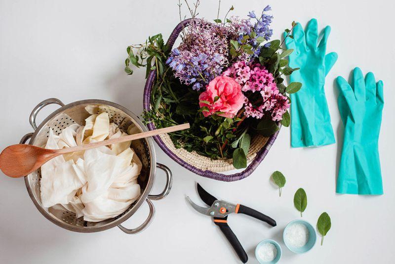 Barwienie i bielenie roślin
